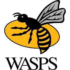 wasps_logo[1]